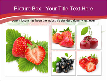 0000074431 PowerPoint Template - Slide 19