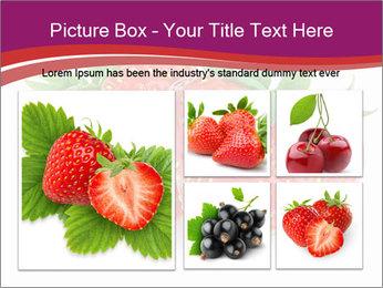 0000074431 PowerPoint Templates - Slide 19