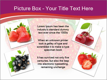 0000074431 PowerPoint Templates - Slide 24