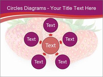 0000074431 PowerPoint Templates - Slide 78