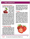 0000074431 Word Template - Page 3