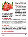 0000074431 Word Template - Page 4