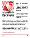 0000074435 Word Templates - Page 4
