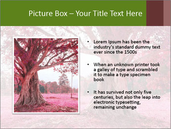0000074436 PowerPoint Templates - Slide 13