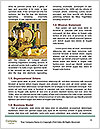 0000074442 Word Templates - Page 4