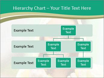 0000074443 PowerPoint Template - Slide 67