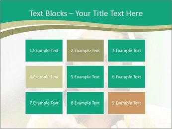 0000074443 PowerPoint Template - Slide 68
