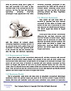 0000074447 Word Templates - Page 4