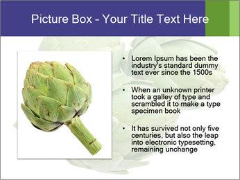 0000074450 PowerPoint Template - Slide 13