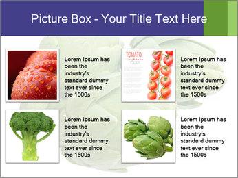 0000074450 PowerPoint Templates - Slide 14