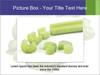 0000074450 PowerPoint Template - Slide 15