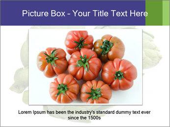 0000074450 PowerPoint Template - Slide 16