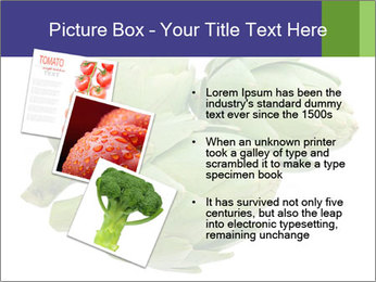 0000074450 PowerPoint Template - Slide 17
