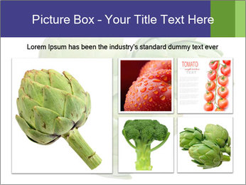 0000074450 PowerPoint Template - Slide 19