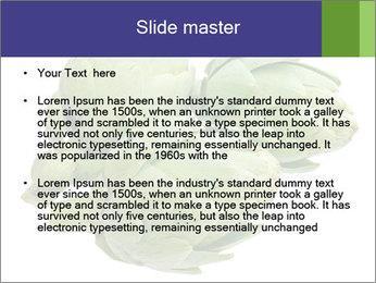 0000074450 PowerPoint Templates - Slide 2