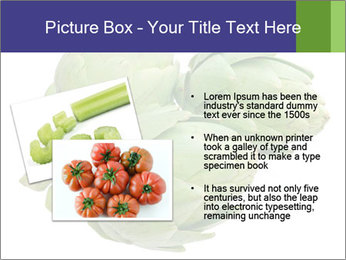 0000074450 PowerPoint Template - Slide 20