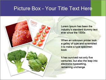 0000074450 PowerPoint Template - Slide 23