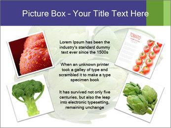0000074450 PowerPoint Template - Slide 24