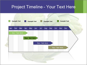 0000074450 PowerPoint Templates - Slide 25