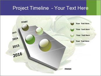 0000074450 PowerPoint Templates - Slide 26