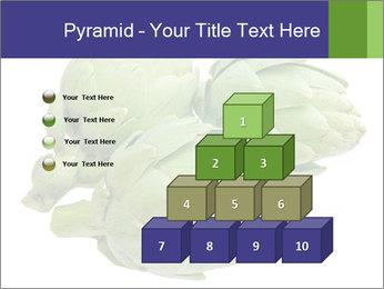 0000074450 PowerPoint Template - Slide 31