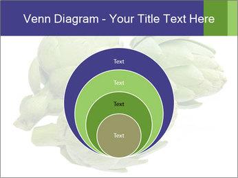 0000074450 PowerPoint Template - Slide 34