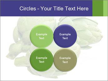 0000074450 PowerPoint Templates - Slide 38