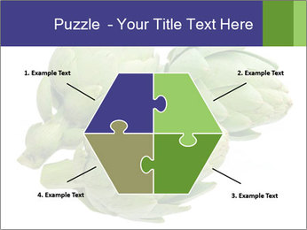 0000074450 PowerPoint Templates - Slide 40
