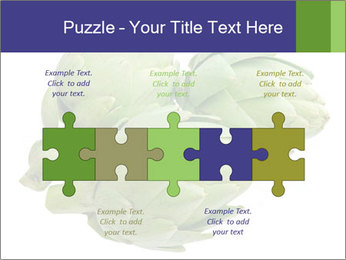 0000074450 PowerPoint Template - Slide 41