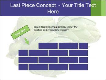 0000074450 PowerPoint Templates - Slide 46
