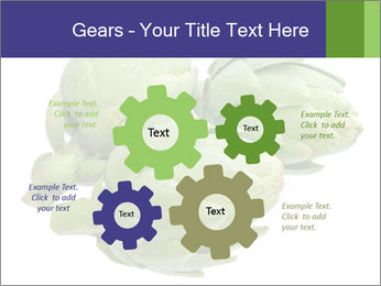 0000074450 PowerPoint Templates - Slide 47