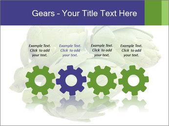 0000074450 PowerPoint Template - Slide 48
