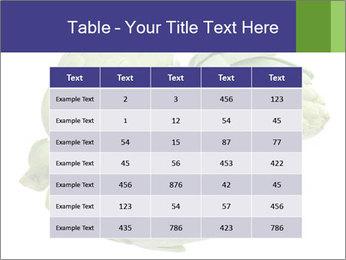 0000074450 PowerPoint Templates - Slide 55