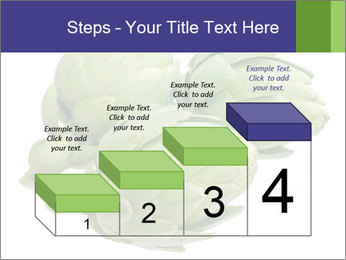 0000074450 PowerPoint Templates - Slide 64