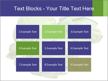 0000074450 PowerPoint Templates - Slide 68