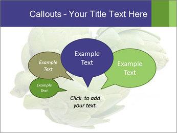 0000074450 PowerPoint Template - Slide 73