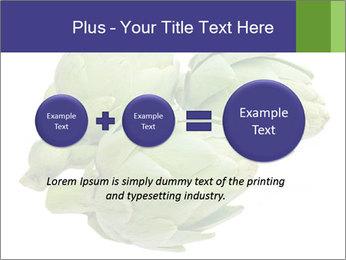 0000074450 PowerPoint Templates - Slide 75