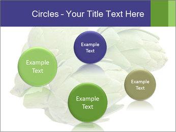 0000074450 PowerPoint Templates - Slide 77