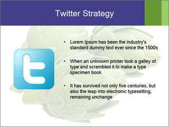 0000074450 PowerPoint Template - Slide 9