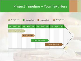 0000074454 PowerPoint Template - Slide 25