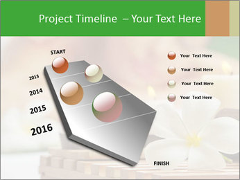 0000074454 PowerPoint Templates - Slide 26