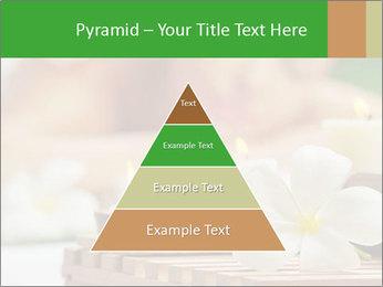0000074454 PowerPoint Templates - Slide 30