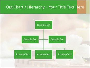 0000074454 PowerPoint Templates - Slide 66