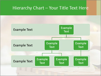 0000074454 PowerPoint Templates - Slide 67