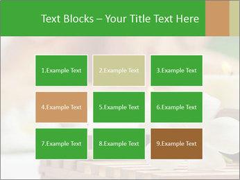 0000074454 PowerPoint Templates - Slide 68