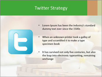 0000074454 PowerPoint Templates - Slide 9