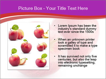 0000074458 PowerPoint Template - Slide 13