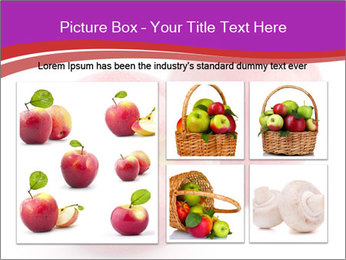 0000074458 PowerPoint Template - Slide 19