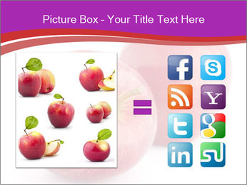 0000074458 PowerPoint Template - Slide 21