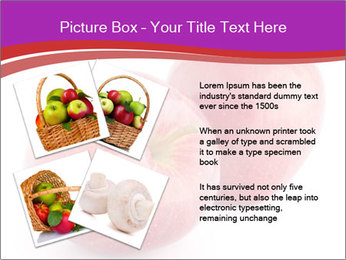 0000074458 PowerPoint Template - Slide 23